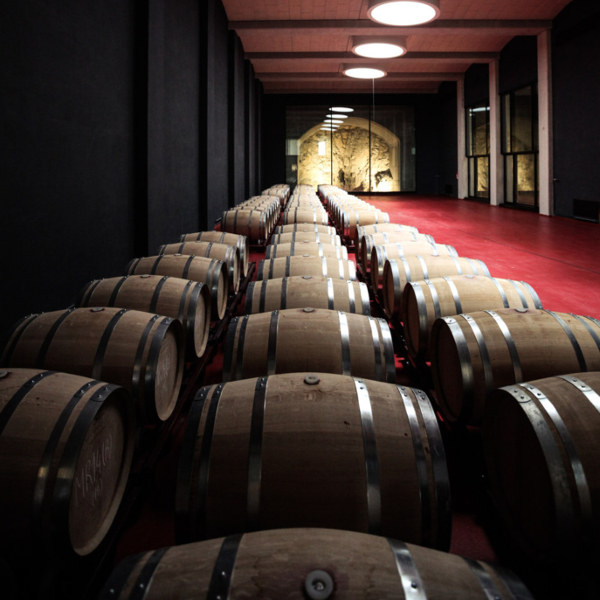 Can Axartell Weingut